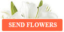 Click Here to Send Flowers